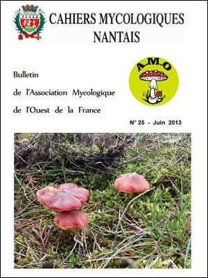 Cahiers Mycologiques 2013