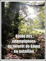 Guide forêt du Gâvre