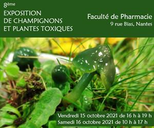Expo Pharma